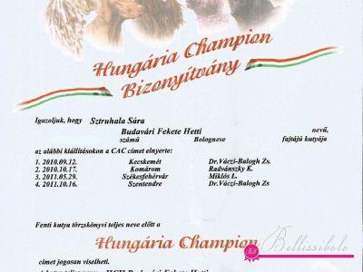 Hetti Hungarian Champion