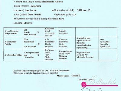 Alberto Patella Check - 01.09.2014 - FREE Grade 0