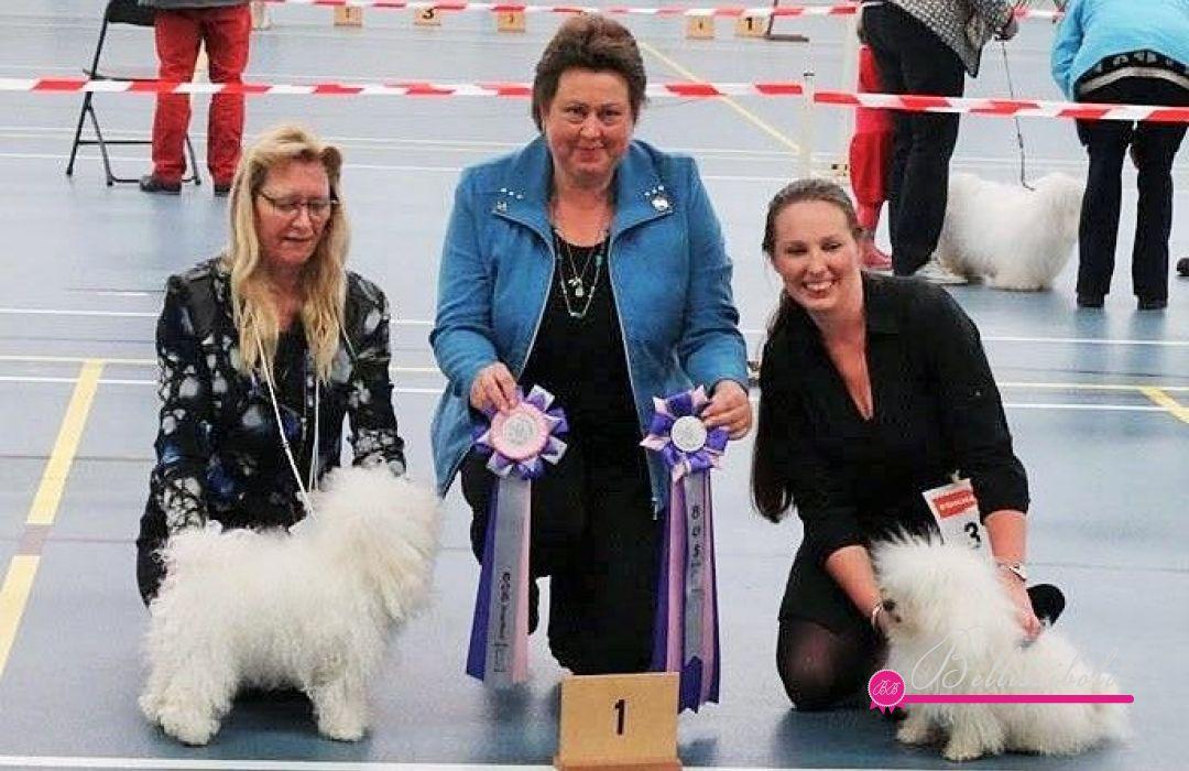 BB Adriana Klubsieger Niederlande 2014