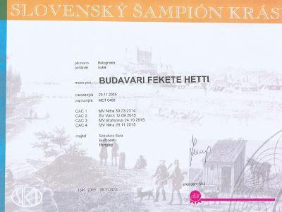 Hetti Slowakisch Champion