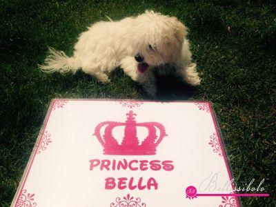 Bellissibolo Bella Briella