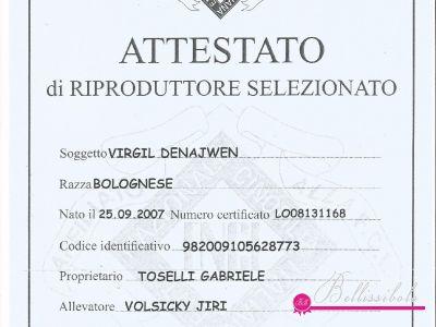 Attestato - Breeding Certificate