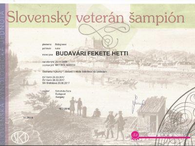Hetti - Veteran Champion of Slovakia