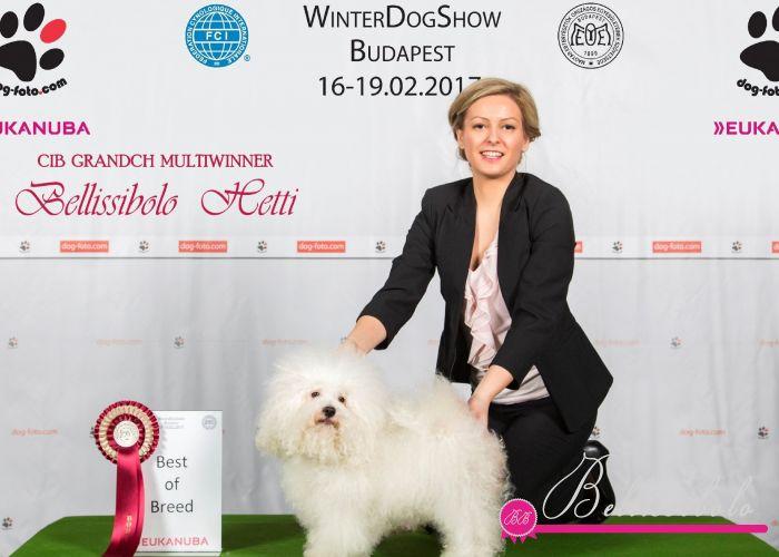 FEHOVA International Dogshow Budapest