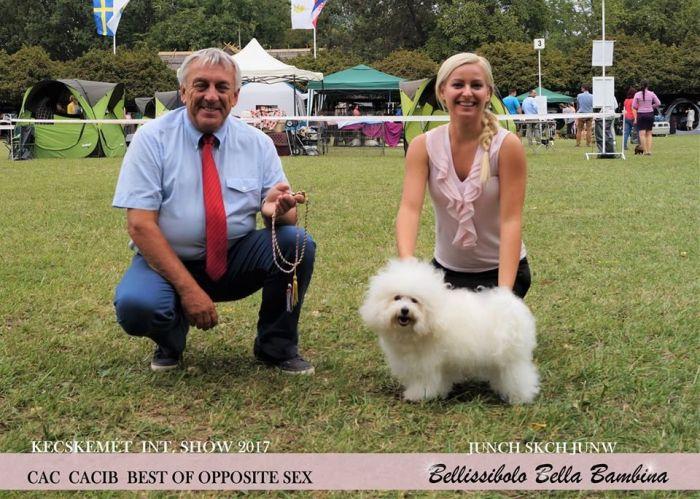 Hódmezővásárhely International Dog Show HUN