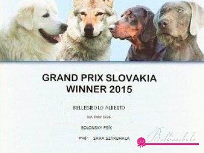 Grand Prix Winner Slovakia 2015