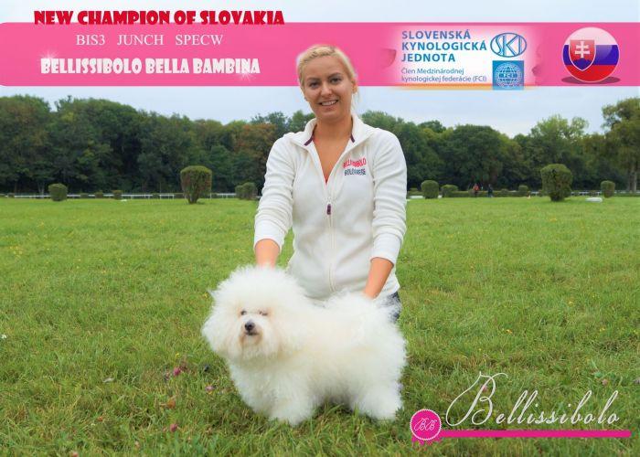 International Dog Show BRATISLAVA, SLOVAKIA