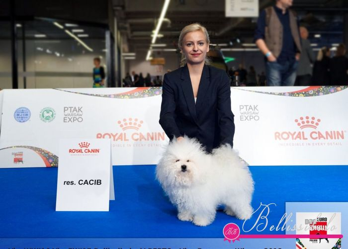 *** EURO DOG SHOW 2018 - WARSAW, POLAND ***